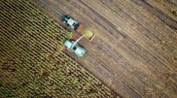 Special Report:AI could feed the world's hungry while sustaining the planet